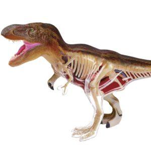 Paléontologie T-Rex